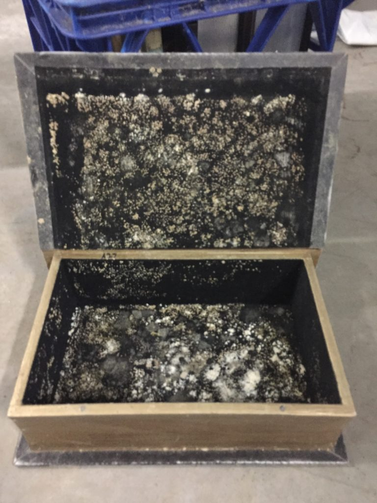 green mould growing on jewellery box